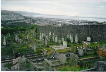 Swansea Jewish Cemetery - general view